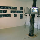 Esprit de Corps (2003)\Four-channel video installation, total running time 29.30min. Installation view from Motive Gallery, Amsterdam (NL)